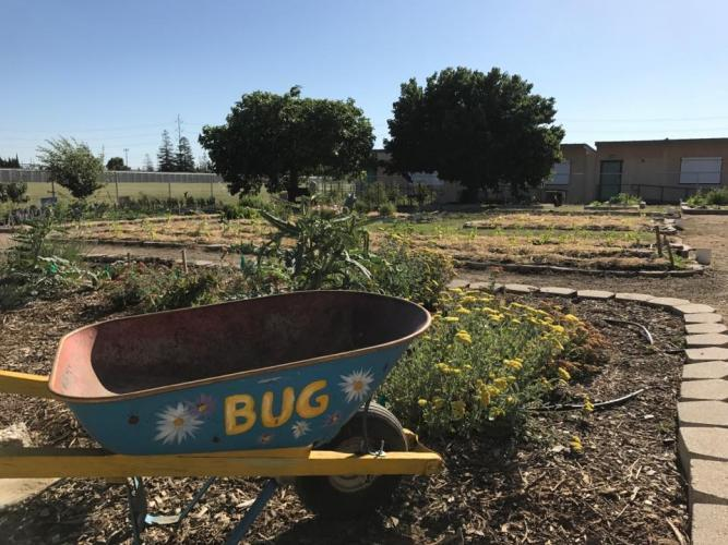 Click to view Urban Ag Academy slideshow